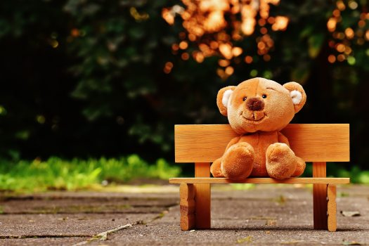 bear-bench-child-207891